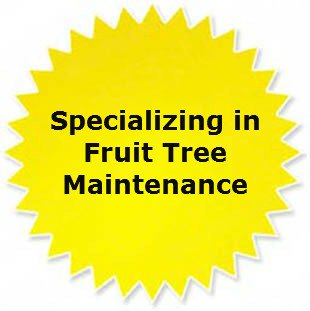 Fruit Tree Maintenance WI